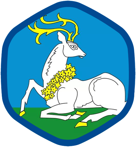 сэс Одинцово